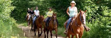 Accompagnement équitation centre équestre de Romainville tous les lundis- Bordeaux