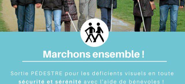 """COUP DE PROJETCEUR POUR L'ASSOCIATION """"MARCHONS ENSEMBLE"""" - Angers"""