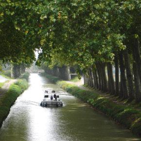 Bateau naviguant sur le Canal du Midi